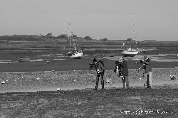 Brancaster Staithe - What are they watching?