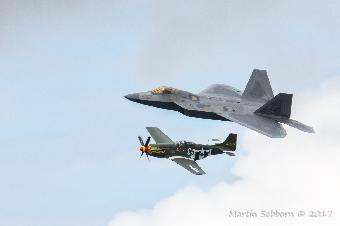 Generations apart - Raptor and Mustang